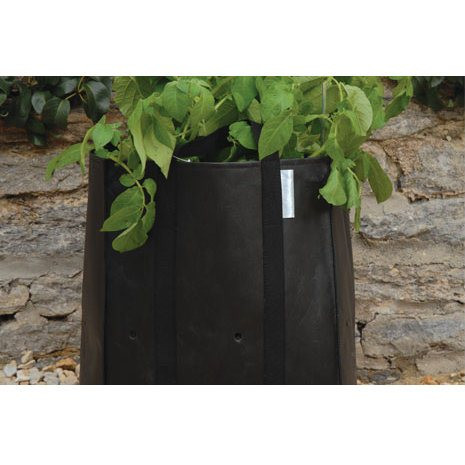 An image of Potato Planting Bag