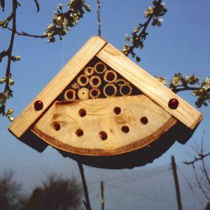 An image of Bug Box