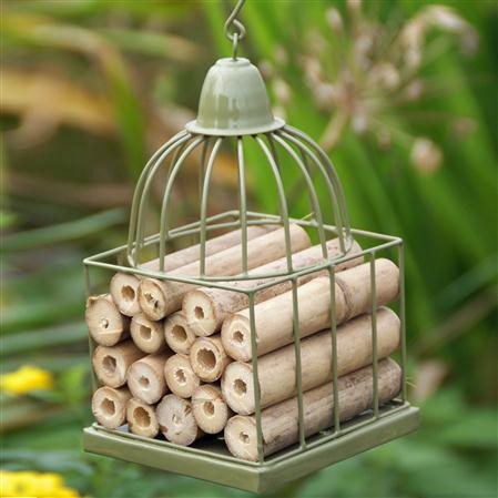 An image of Gazebo / Bird Cage Insect House - GREEN
