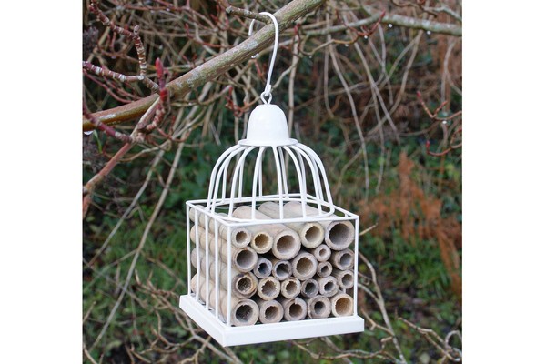 An image of Gazebo / Bird Cage Insect House - CREAM